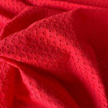 Broderie Anglaise Cotton Suly Rouge