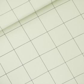 French Terry Thin Grid XL Fog Green