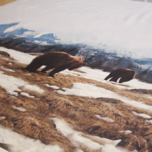 jersey fabric panel with  bears on the mountain 100 cm x 160 cm
