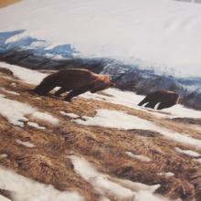 """pannello jersey cotone """"orsi sulle montagne"""" 100 cm x 160 cm"""