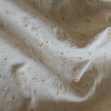 Jersey di cotone sangallo avorio