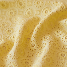 Pizzo di sangallo di cotone giallo canarino